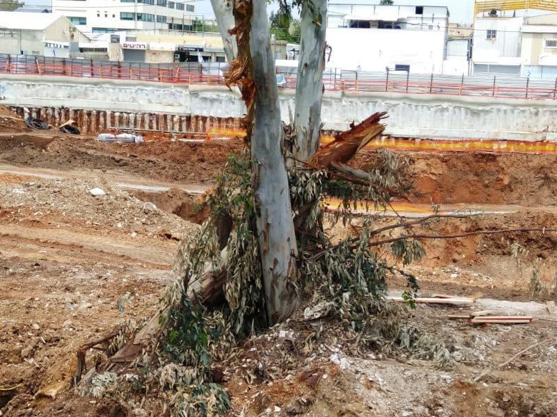 אלפי טונות של אדמה חסמו את נחל יהוד