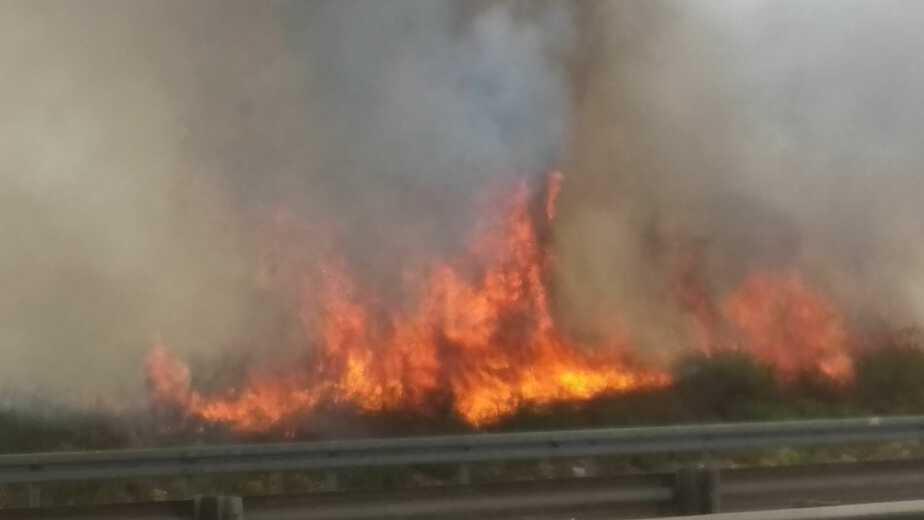 שריפה ברמת פנקס