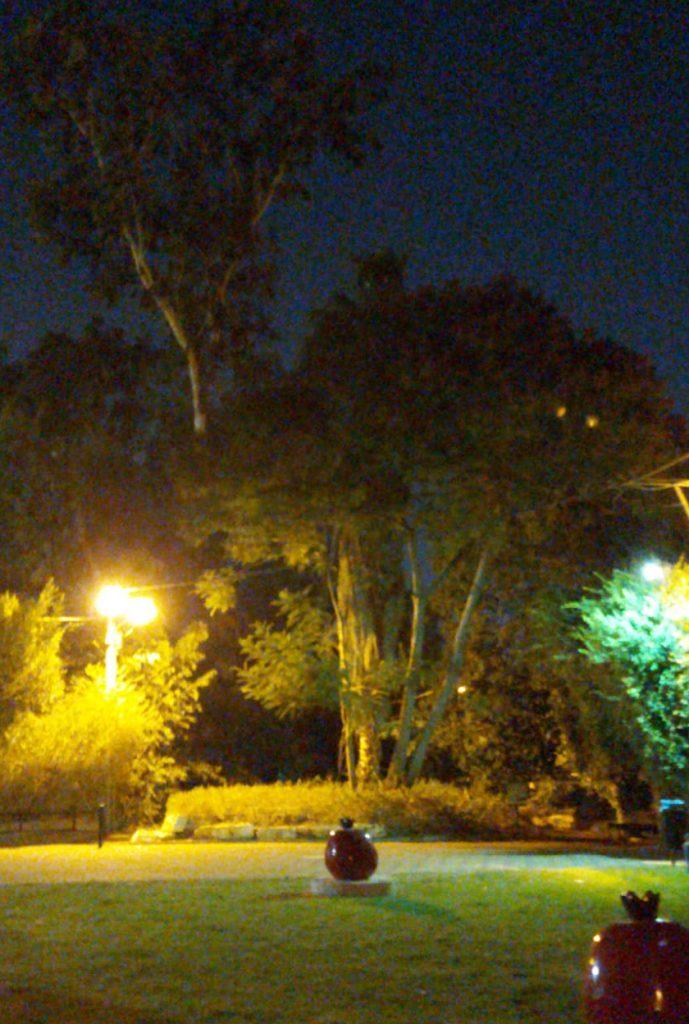 עץ במונוסון
