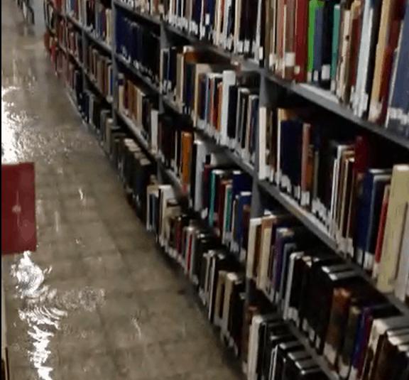 ההצפה בספריה