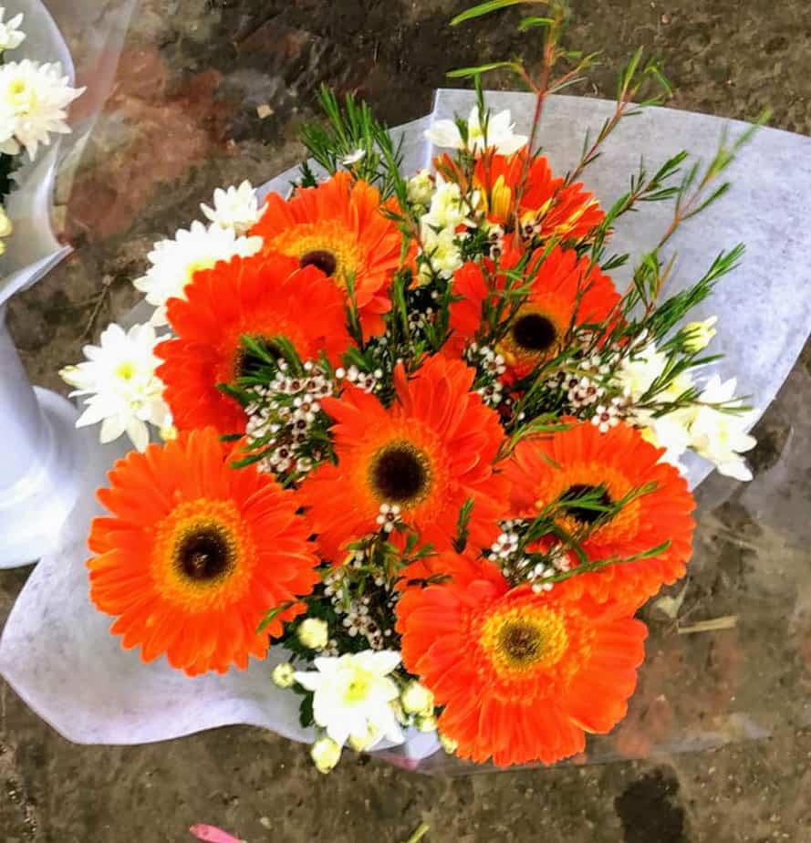 פרחים ממושב פורת. צילום: באדיבות שירלי מרטין