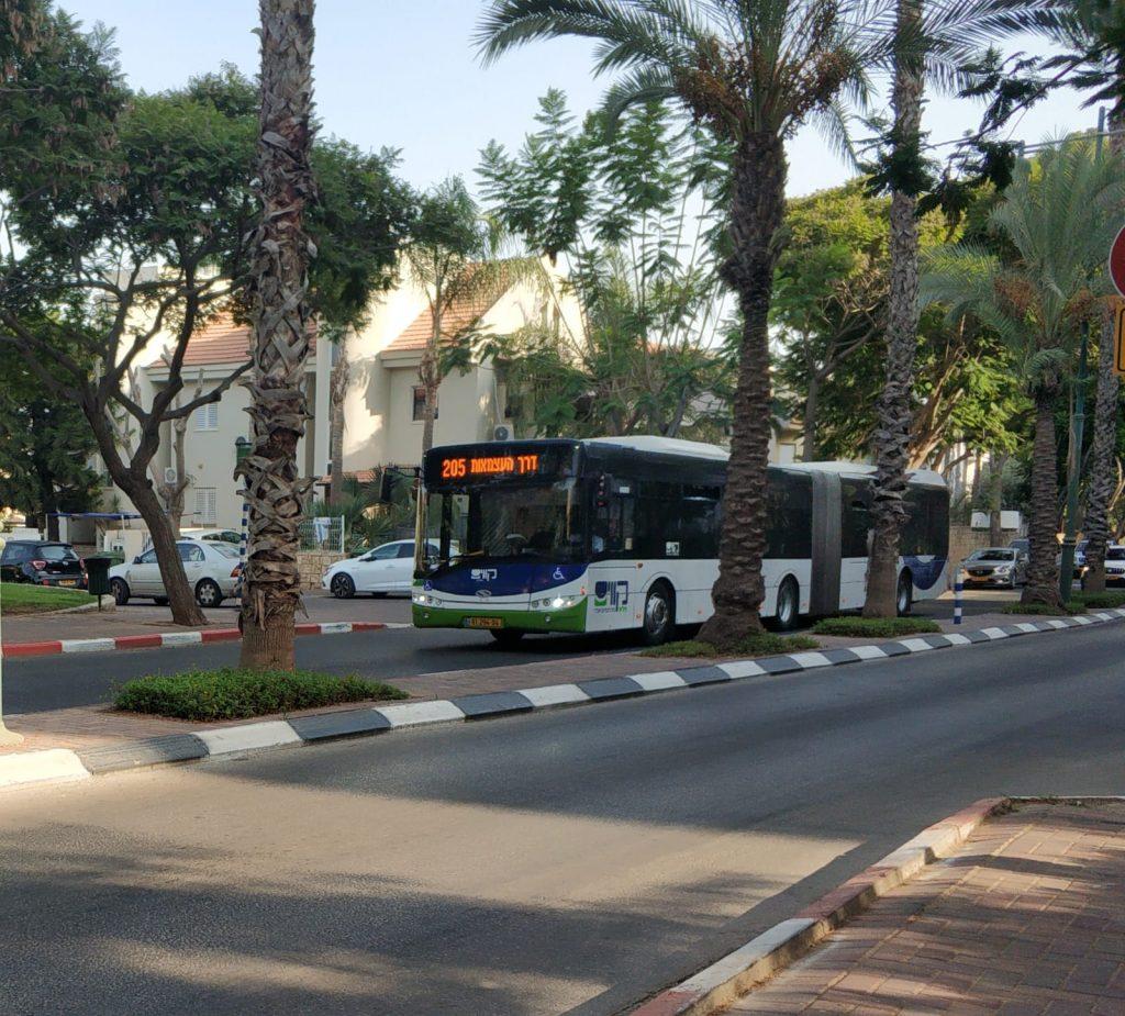 אוטובוס מפרקית קו 205 (צילום: פרטי)