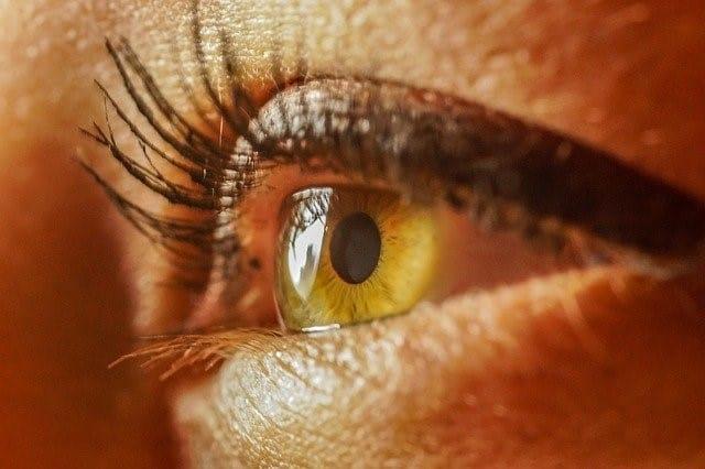 בסט לינקס לכסון עיניים pixabay