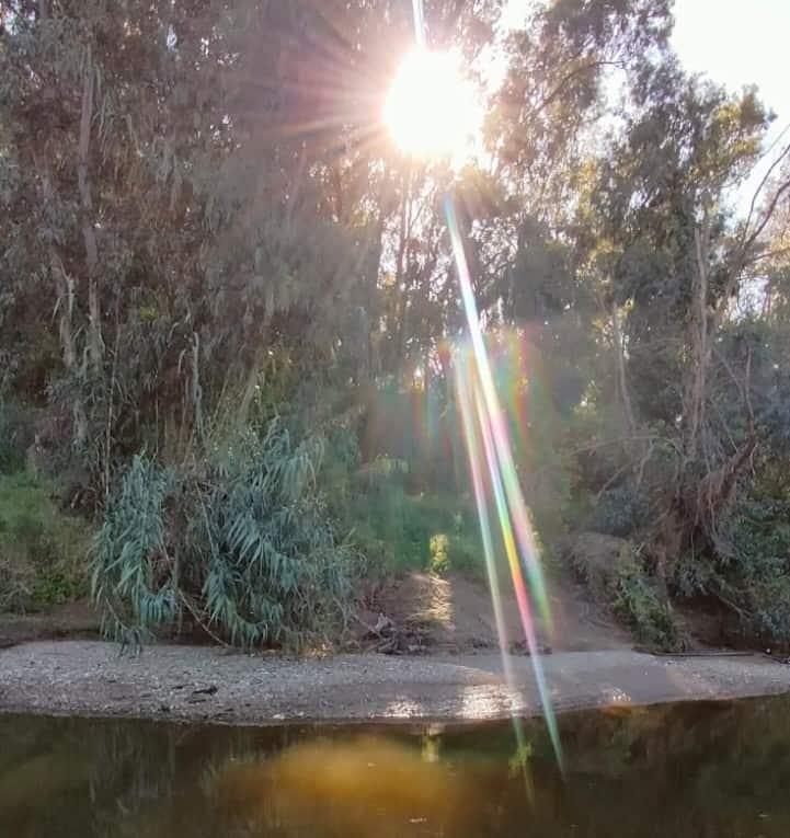 הוואדי באור יהודה (צילום איתמר לוי)