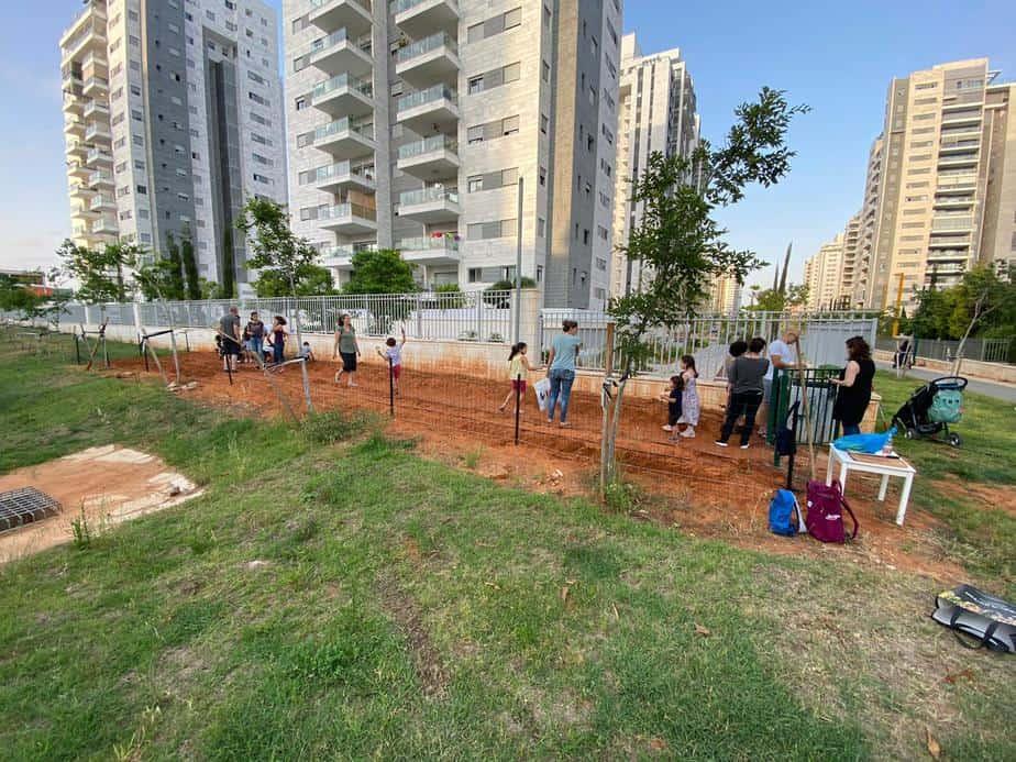 הגינה הקהילתית בגני תקווה. צילום: שמואל דניאל